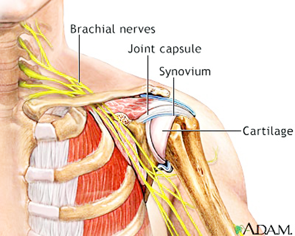 Physiotherapy In Frozen Shoulder