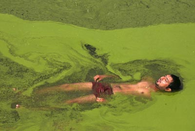 A man cools himself in a pond on a hot summer day on the outskirts of Jammu on Wednesday. (UNI)