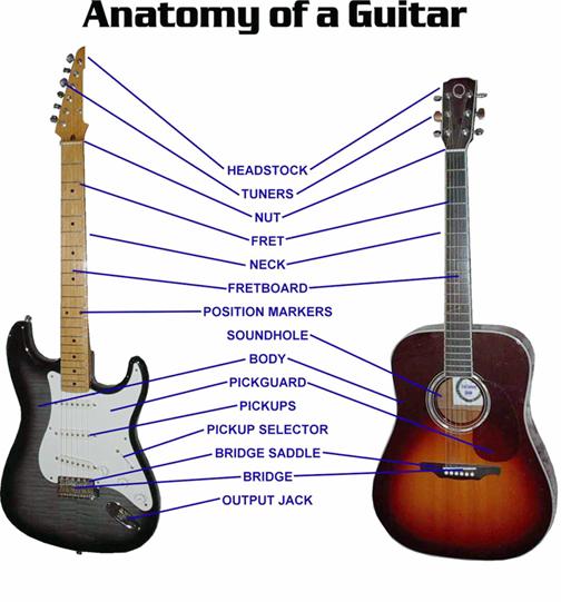 Buying Guitar