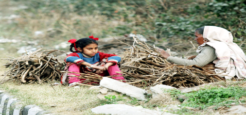 Collecting woods for warmth......— Excelsior/Rakesh