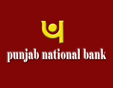 PNB declares 900 firms as wilful defaulters; owe Rs 11,000 cr
