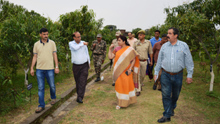 MoS for Horticulture, Priya Sethi during inspection of Nursery at Misriwala on Wednesday.