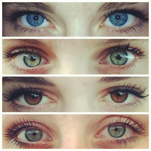 . No blue or green  everyone has brown eyes  expert