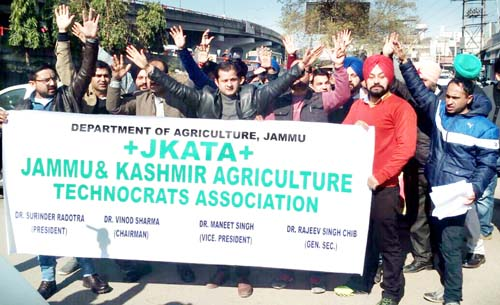 Agriculture Technocrats protesting at Jammu on Thursday.