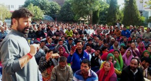 Nurseries being expanded to increase green cover: Lal Singh