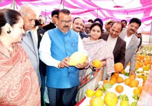 Govt keen to develop horticulture sector: Ganga