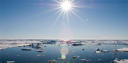 Global warming may make mammals shrink: study
