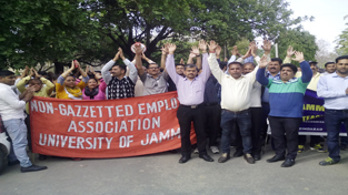 JU employees shouting slogans in support of their demands on Friday.
