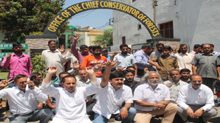 Khair growers staging protest outside the office of  CCF at Jammu on Thursday. — Excelsior/Rakesh