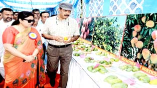 Ministers Basharat Bukhari and Priya Sethi inspecting a stall during 'Mango Show' on Sunday.