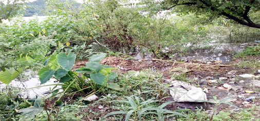 Mansar lake dried up in some areas. -Excelsior/Gautam