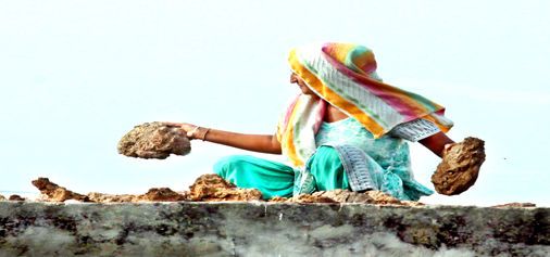 A woman collects cow dung in a village of Jammu. -Excelsior/Rakesh