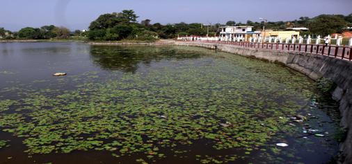 Polluted Surinsar lake.... -Excelsior/Rakesh