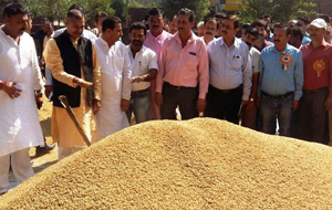 VC Kissan Advisory Board, Daljeet Singh Chib during inauguration of Paddy Procurement Centre.