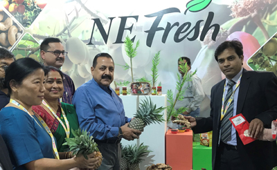 """Union Minister Dr Jitendra Singh going around the Northeast Pavilion, set up by the Ministry of Development of North Eastern Region (DoNER), at """"World Food India 2017"""" Festival at India Gate, New Delhi on Saturday."""