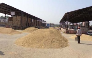 FCI,  State Government delaying   paddy procurement: Kissan Union