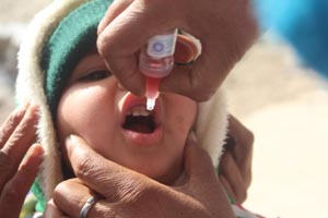 Polio drops being administered to a child on Sunday.