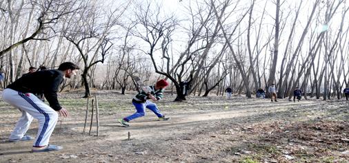 Boys play cricket on a bright sunny day in Srinagar. -Excelsior/Shakeel