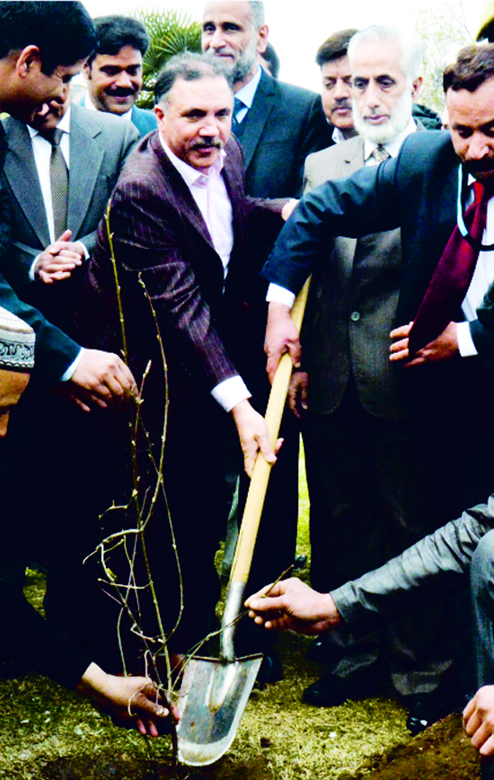 J&K Bank Chairman and CEO Parvez Ahmed along with others planting sapling of a tree in the park at Badamvaer, Srinagar.