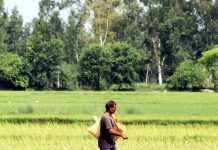 Villager works in his field on the outskirts of Jammu. —Excelsior/Rakesh
