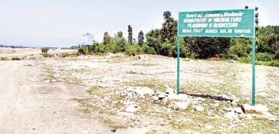 Land identified for Fruit Mandi at Aglar in Shopian. —Excelsior/Younis Khaliq