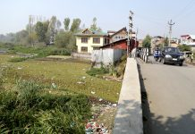Unabated encroachments and pollution at Gilsar lake. -Excelsior/Shakeel