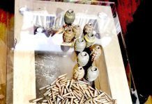 Grenades and ammunition recovered from a woman in Srinagar on Tuesday. -Excelsior/Shakeel