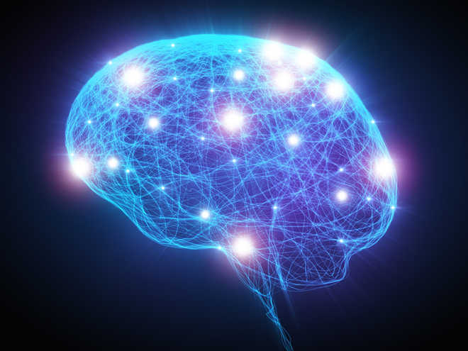 Socioeconomic Status And Developing >> Socioeconomic Status Shapes Developing Brains Study