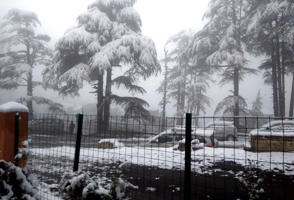 A view of fresh snowfall at Patnitop on Wednesday.