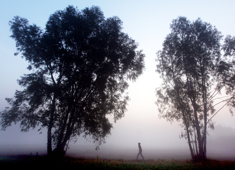Villager walks in a field on a foggy morning on the outskirts of Jammu. —Excelsior/Rakesh