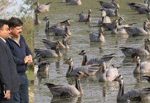 Forest Secretary M K Dwivedi during visit to Gharana Wetland.