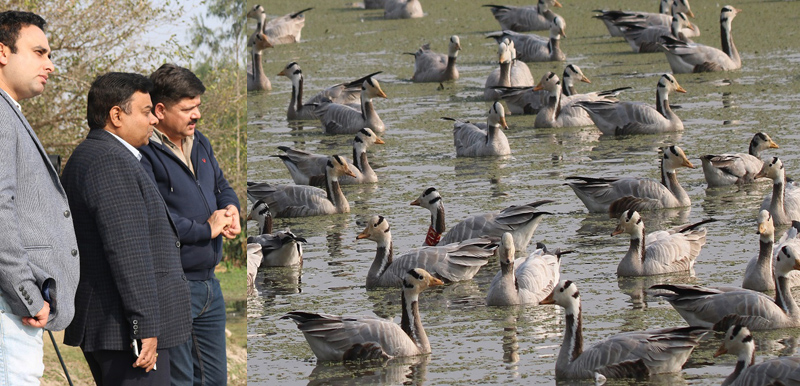 Forest Secretary M K Dwivedi during visit to Gharana Wetland.