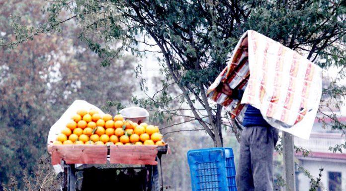 Vendor takes shelter from rain in Jammu on Sunday. —Excelsior/Rakesh