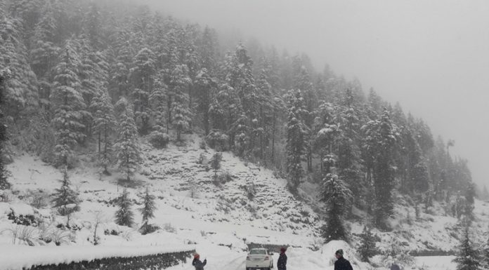 Outskirts of Bhaderwah town in Jammuu region witness heavy snowfall on Sunday morning. (UNI)