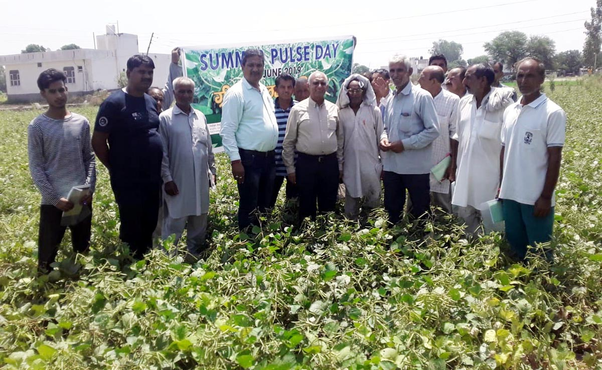 SKUAST-Jammu scientists with farmers during Summer Pulse Day programme.