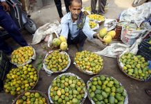 Vendor sells mangoes in Jammu. -Excelsior/Rakesh
