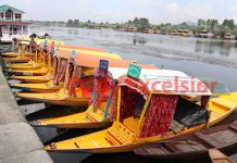 Deserted Shikara boats moored on the banks of Dal lake on Sunday. —Excelsior/Shakeel