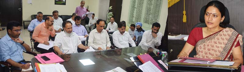 Deputy Commissioner Jammu, Sushma Chauhan chairing a meeting on Thursday.