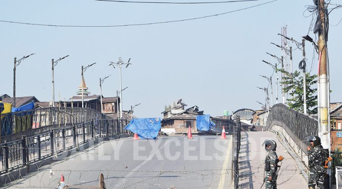 A deserted road in Srinagar during restrictions on Sunday. — Excelsior / Shakeel