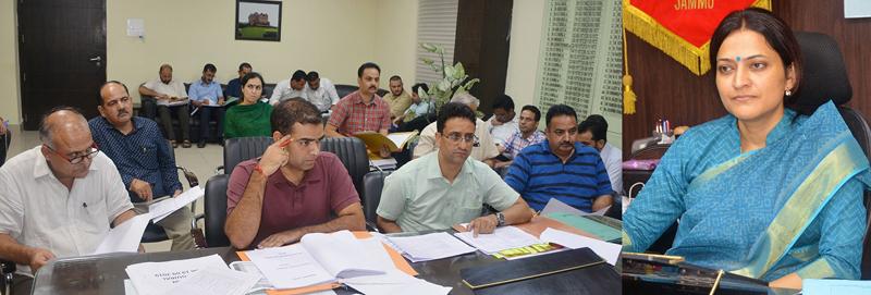 DDC Sushma Chauhan chairing a meeting on Thursday.