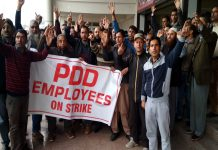 PDD employees protesting in Srinagar on Saturday. -Excelsior/Shakeel
