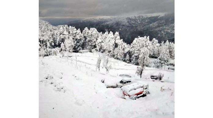 A view of heavy snowfall at Patnitop.