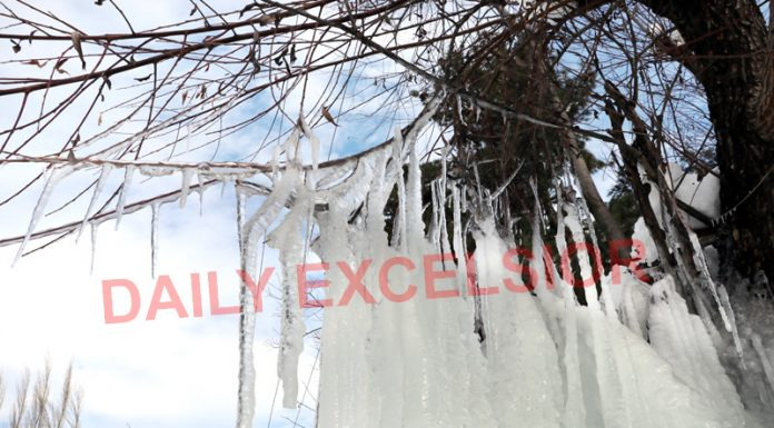 Icicles formed due to sub zero temperature along Mughal Road near Shopian -Excelsior/Younis Khaliq