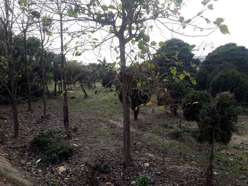 Neglected SIDCO park at Samba. —Excelsior/Badyal