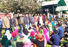 CP workers protesting in the premises of Directorate of School Education Jammu on Tuesday.