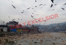 Birds flying over river Mendhar. -Excelsior/Rahi Kapoor