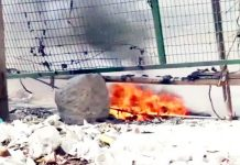 Protesters at Shaheen Bagh have alleged that a petrol bomb was hurled nearby the anti-Citizenship Amendment Act protest site on Sunday.