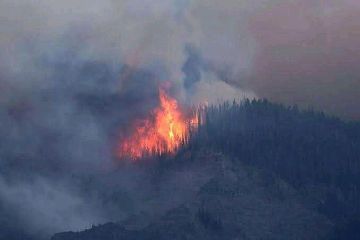 Massive fire in Sopore forests. —Excelsior/Aabid Nabi