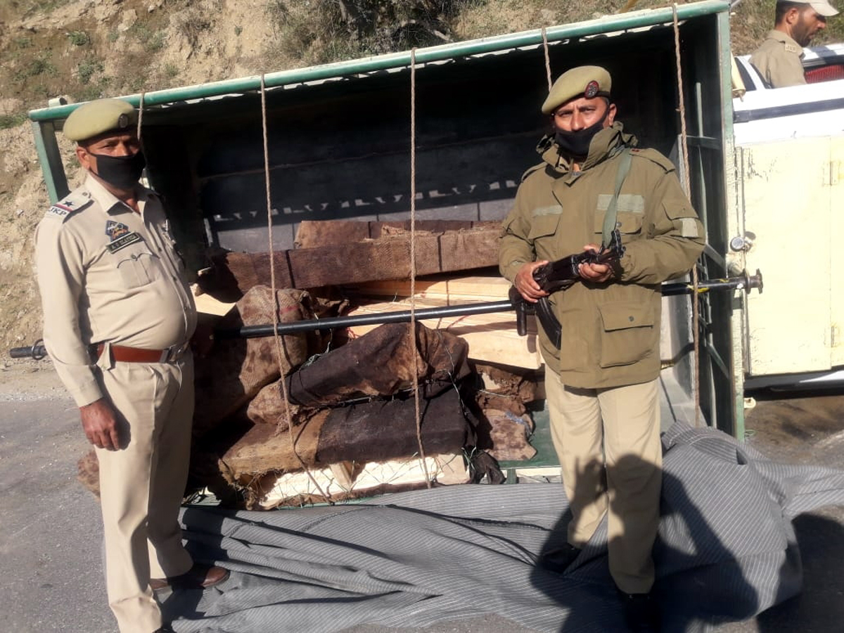 Illicit timber seized by police in Bhagwa area of District Doda. —Excelsior/Rafi Choudhary