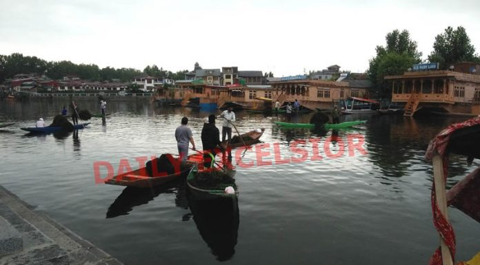 Labourers de-weed the famous Dal lake in Srinagar to restore its pristine glory amid lockdown on Thursday. (UNI)